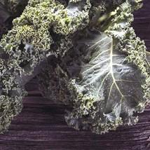 100Pcs Siberian Kale Vegetable Seeds Brassica Oleracea Seed - $19.84
