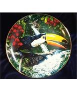 Toco Toucan Porcelain Plate Collectible Royal Cornwall Exotic Bird Tropique - $19.99