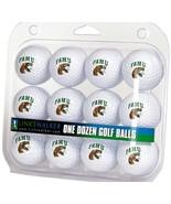Florida A&M Rattlers Dozen 12 Pack Golf Balls - $31.63