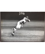 Herb Scharfman Sports Illustrated Photo of St. Louis Cardinals Nelson Br... - $18.90