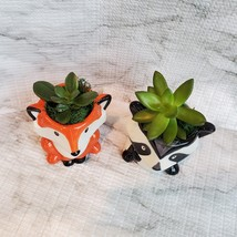 Animal Planters with Succulents, Fox and Raccoon, 3 inches, ceramic image 2