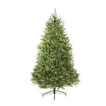 6.5' Pre-lit Northern Pine Full Artificial Christmas Tree - Clear Lights - ₨27,636.26 INR