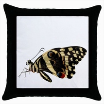 Throw pillow case butterfly  - $19.50