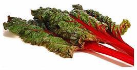 Sow No GMO Swiss Chard Rhubarb Leafy Greens with Deep Red Stems Non GMO Heirloom - $3.93