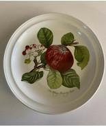 Portmeirion England Pomona Grimwoods ~Hoary Morning Apple~ Dinner Plate ... - $22.99
