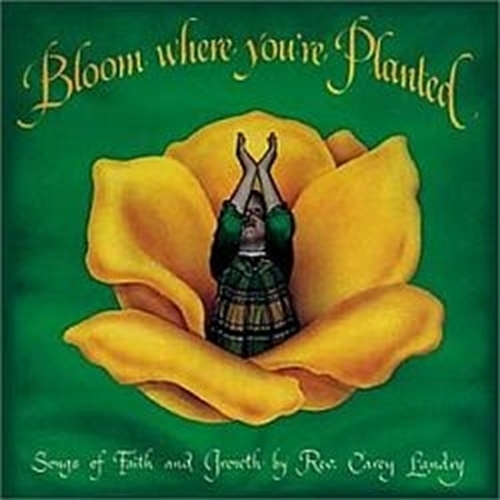 Bloom where you are planted by carey landry1