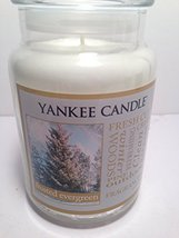 "Yankee Scented Candle ""Frosted Evergreen"" Fragrance, in Large Jar with L... - $44.99"