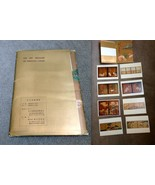 THE ART TREASURE OF NAGOYA CASTLE Gold Book 8 Art Lithograph Plates Japa... - $186.64