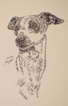 ITALIAN GREYHOUND DOG PRINT #43 Drawn from words KLINE ADDS YOUR DOGS NA... - $49.95