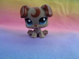 Hasbro Littlest Pet Shop Tan Brown Boxer Puppy Dog Teal Blue Eyes #1197 ... - $305,25 MXN
