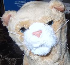 Tiger Electronics Furreal newborn kitten - $18.69