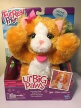 Furreal Friends lil'Big Paw By Hasbro Peek a boo Daisy New - $14.85