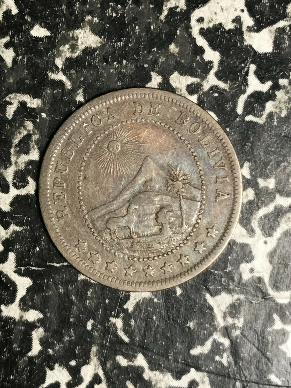 1895 Bolivia 5 Cents Lot#L2776