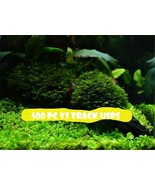 Pearl Moss Seeds Ornamental Plants Water Grass Seeds Live Aquarium Plant... - $3.85