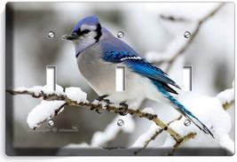 Blue Jay Bird Winter Snow Bluebird Light Triple Switch Wall Cover New Room Decor - $16.17