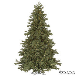 Primary image for Vickerman 7.5' Frasier Fir Christmas Tree with Clear Lights