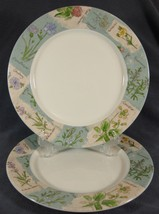 "Royal Doulton WILDFLOWERS TC1219 Lot of 2 Dinner Plates 11"" Everyday Flo... - $36.97"