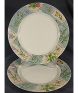 """Royal Doulton WILDFLOWERS TC1219 Lot of 2 Dinner Plates 11"""" Everyday Flo... - $36.97"""