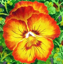 "Akimova: RED PANSY, flower, acrylic, 10""x10"" - $20.00"