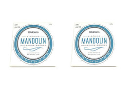 D'Addario Mandolin Strings 2-Pack  EJ73 (formerly J73)  Light  .010-.038 - $19.29