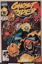 Ghost Rider #16 (Aug 1991, Marvel) - $1.98
