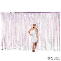 Large Iridescent Plastic Fringe Curtain Background - $30.25