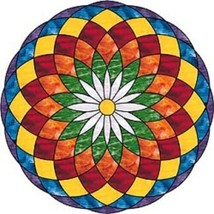 Quantum BioPhysics Natural Power Ionic Magic Mandala Disc 10.78k Neg Ions - $6.96