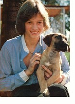 Jimmy Mcnichol teen magazine pinup clipping with a puppy open blue shirt Bop