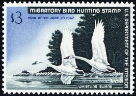 RW33, Whistling Swans $3.00 Federal Duck Stamp Superb NH -- Stuart Katz - $69.00