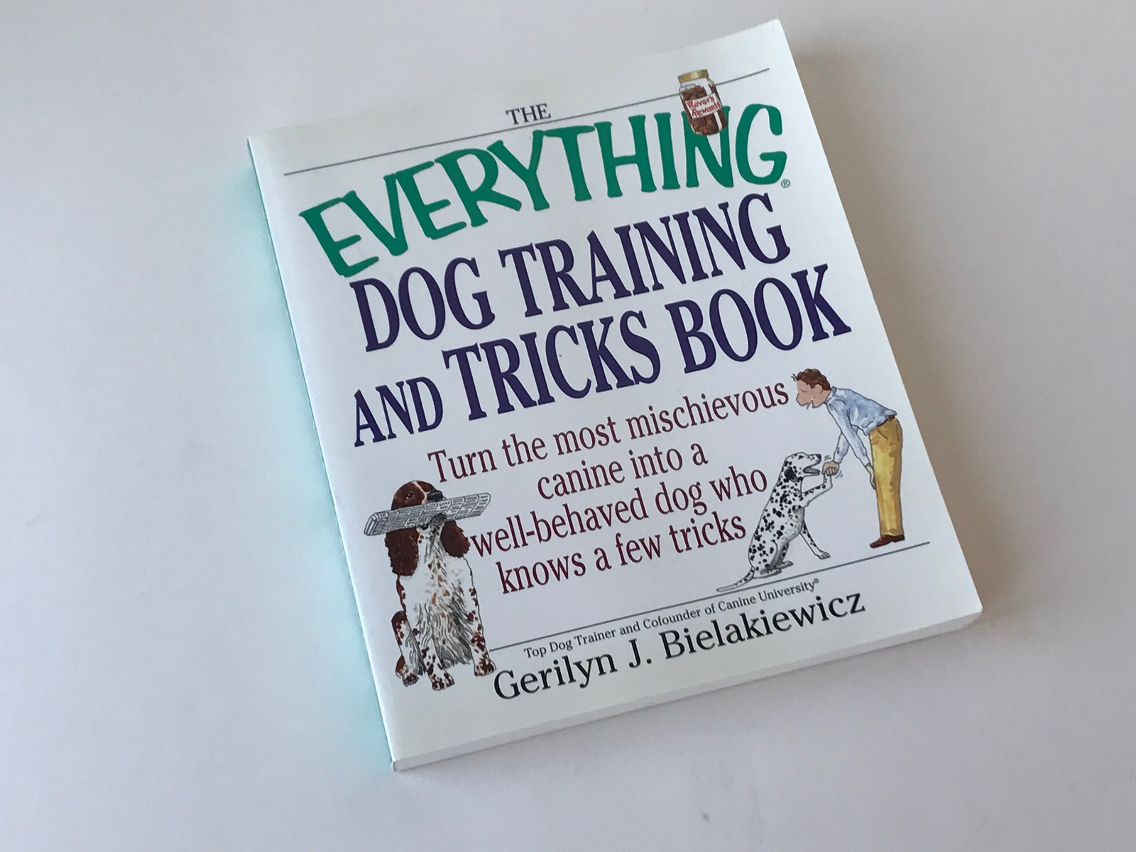 Primary image for Everything Dog Training and Tricks Book Gerilyn J Bielakiewicz