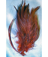 Feathers Brick Red Whispy Crafts Flies 5inch Lot Of 20 Fly Tying Crafts ... - £5.29 GBP