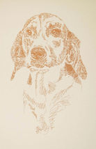 FOXHOUND DOG ART Signed Magic Drawing #18 Kline adds your dogs name free... - $49.95