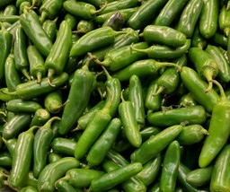 (50+) Seeds - Jalapeno - Early Variety, Non GMO, Free Ship, Free Growing... - $2.27