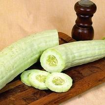 10 Pcs Long crisp melon Seed Cucumis Sativus Linn Organic Vegetable Seed B119 - $13.58