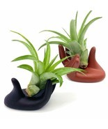 2 Pcs Small Clay Air Plant Stand Pot Art Hand Shape Holder Fuego Planter... - $12.86