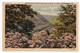 1930-1945 Trout Run Route 14 North of Williamsport PA Susquehanna Trail ... - $11.87