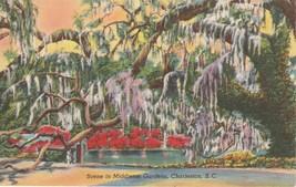 Middleton Gardens Charleston South Carolina SC Postcard Linen Colourpicture - $3.34
