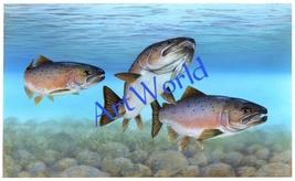 Digital download,Salmon fish,Photography,Art,Christmas decor,Wall art,Pr... - $4.50