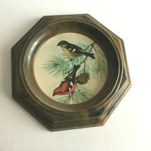 "Round Framed Picture Birds Robins  Resin Frames  5"" Round Mid Century  - $8.86"