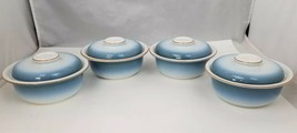 Nikko Gradiance Cereal Soup Bowl Lid Set of 4 Azure Leafette Dish Microw... - $29.02