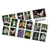 USPS Book of 20 Wild Orchids Stamps - $13.99