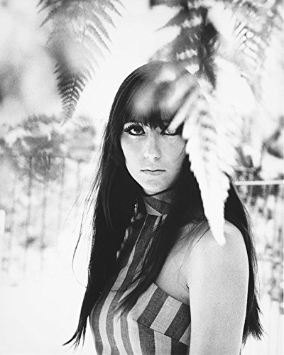 Primary image for Cher 60'S Flower Child Look B&W 16x20 Canvas Giclee