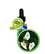 Labdanum (Rock Rose) Absolute Oil - 100% Pure (Cistus ladanif) -8oz (240ml) - $146.99