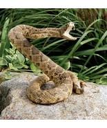 Rattle Snake Curse - $66.66