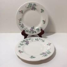 "2 Salad Plates Pfaltzgraff Grapevine 8"" Grapes Rosebuds - $12.59"