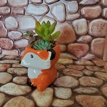 Mini Fox Planter with Succulent Arrangement, Succulent Gift, Animal Planter Pot image 8