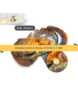 Pearl Oyster Copper Orange Akoya Oyster Pearl Packed 6-7mm 10 / 20 / 30 pcs - $55.66+