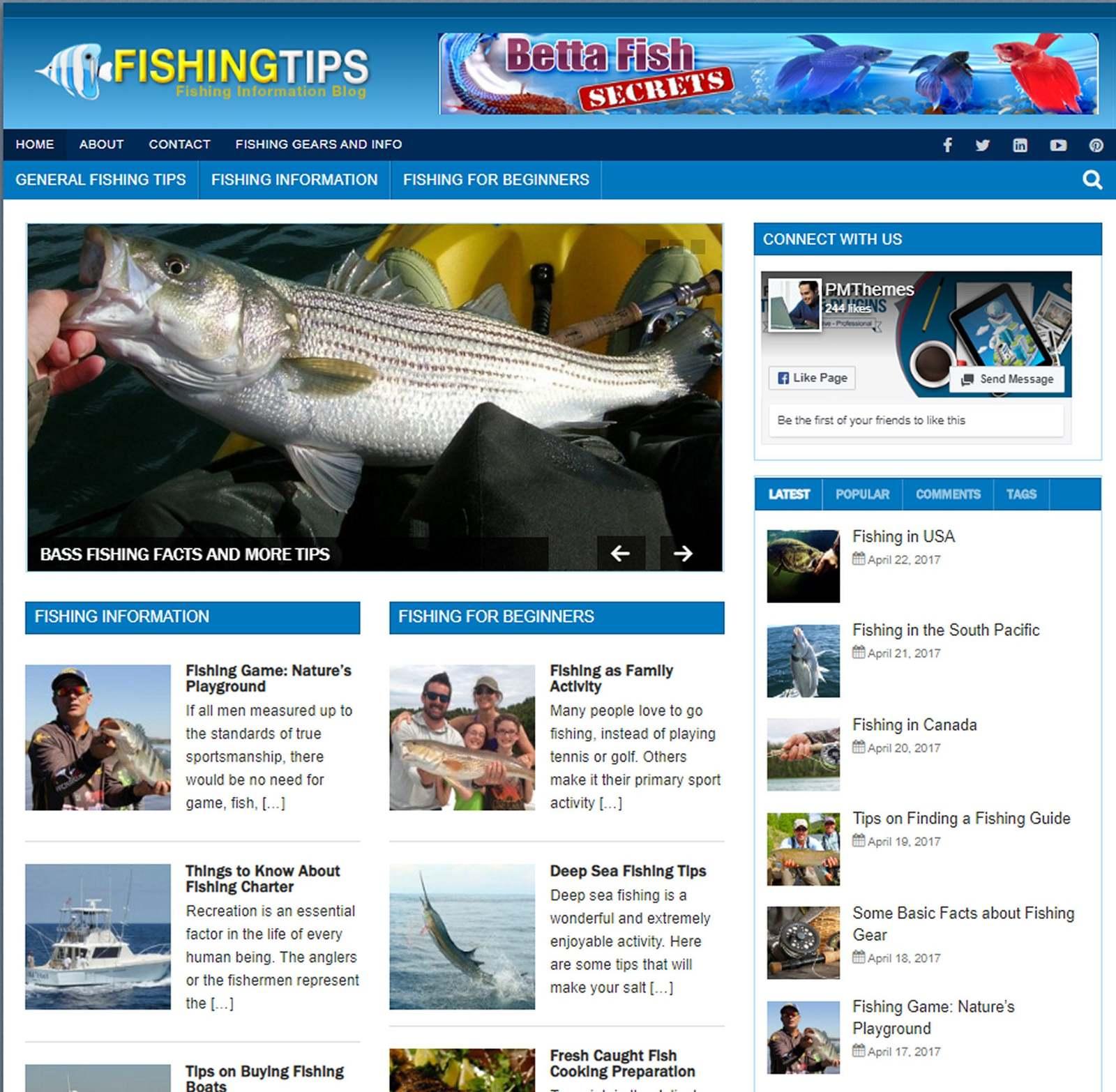 Fishing Tips Mobile Responsive WordPress Blog Includes Hosting & Setup