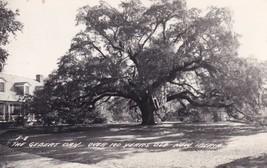 New Iberia Louisiana LA Gebert Oak 1957 Real Photo RPPC Postcard C03 - $21.59