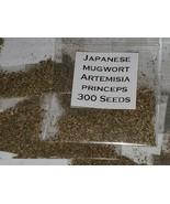 Japanese Mugwort Seeds (Artemisia princeps) - $5.94+